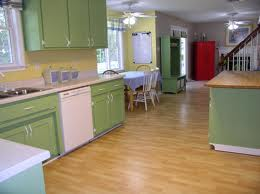 about painted kitchen cabinets