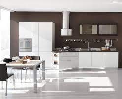 clear contemporary white kitchen cabinets