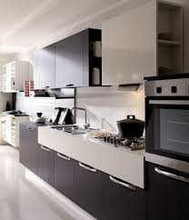 designed modern kitchen cabinets